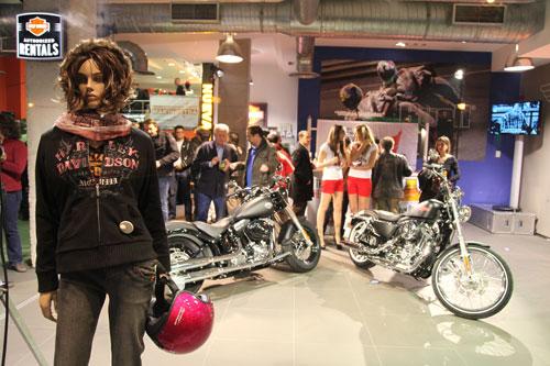 Harley-Davidson - Makinostra (1)