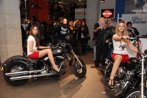 Harley-Davidson - Makinostra (13)