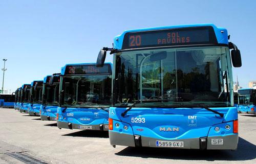 Autobuses de luz diurna