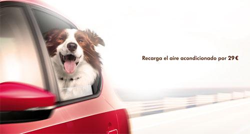 Campaña primavera Volkswagen