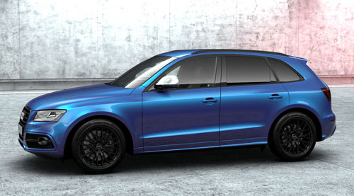 1-Audi-SQ5-Competition