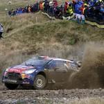 8-WRC-8