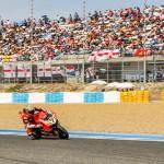 Davies antes la grada del circuito de Jerez